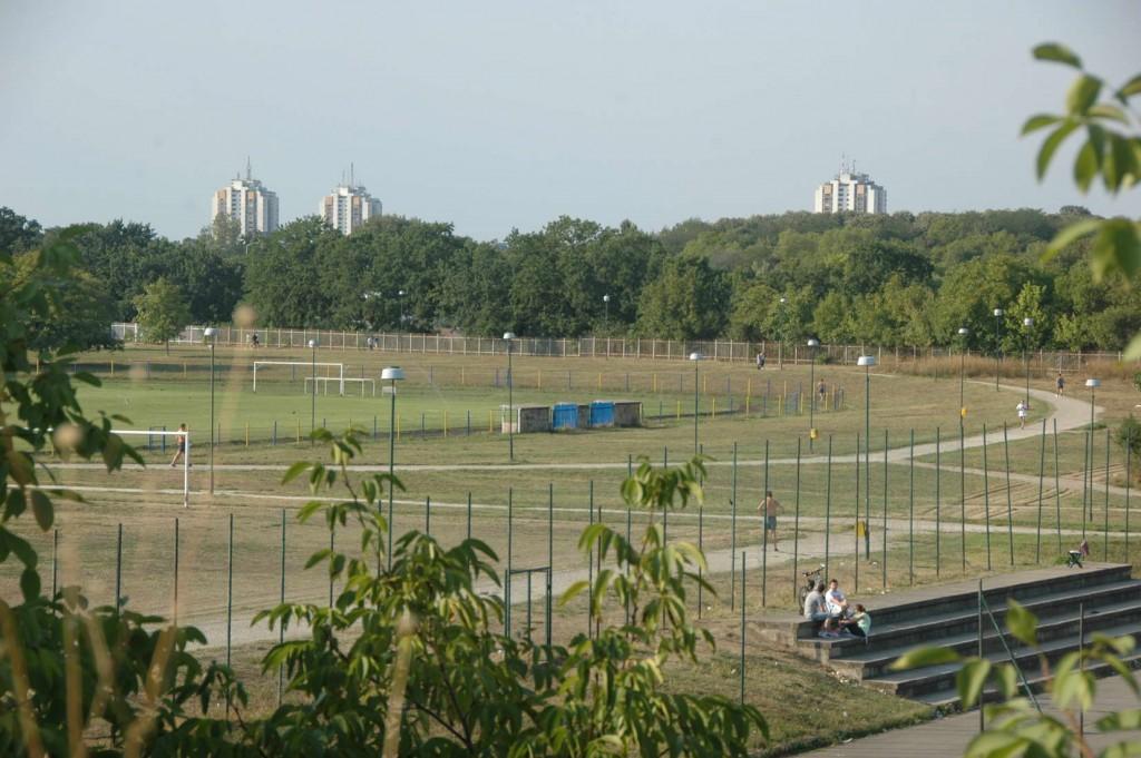 stadion teca sa dunava