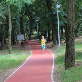 Trim staza u Košutnjaku